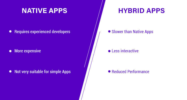 cons of building a Native mobile App & Hybrid mobile App