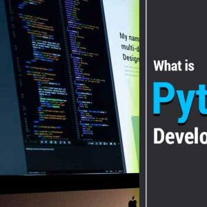 What-is-Python-Development