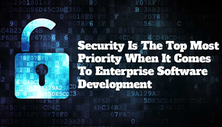 enterprise software development company discussing security