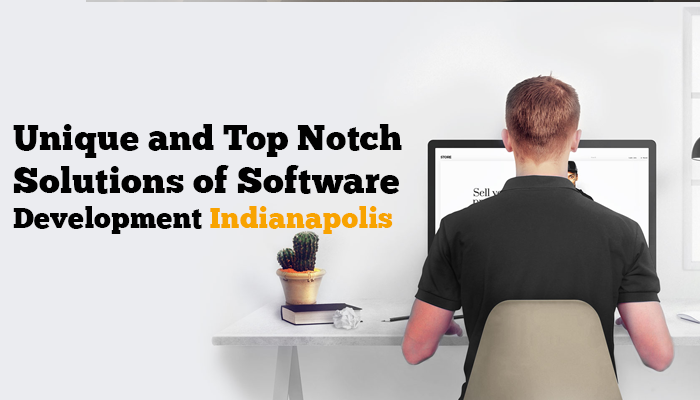 Unique-and-Top-Notch-Solutions-of-Software-Development-Indianapolis