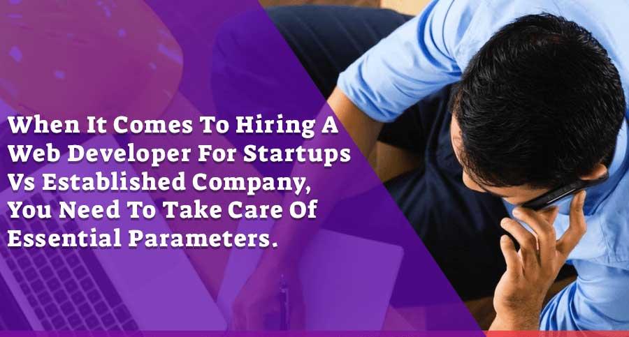 hire web developer | for startup vs established business
