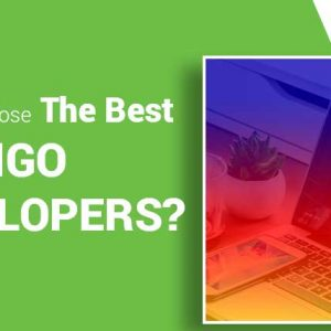 How-to-Choose-the-Best-DJANGO-Developers