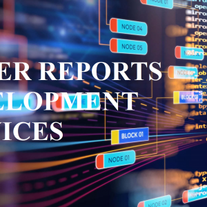 JASPER REPORTS DEVELOPMENT SERVICES